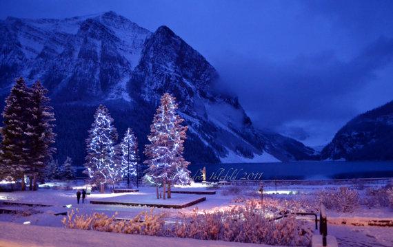 Mountain Christmas Tree.Christmas Tree Southwestdesertlover