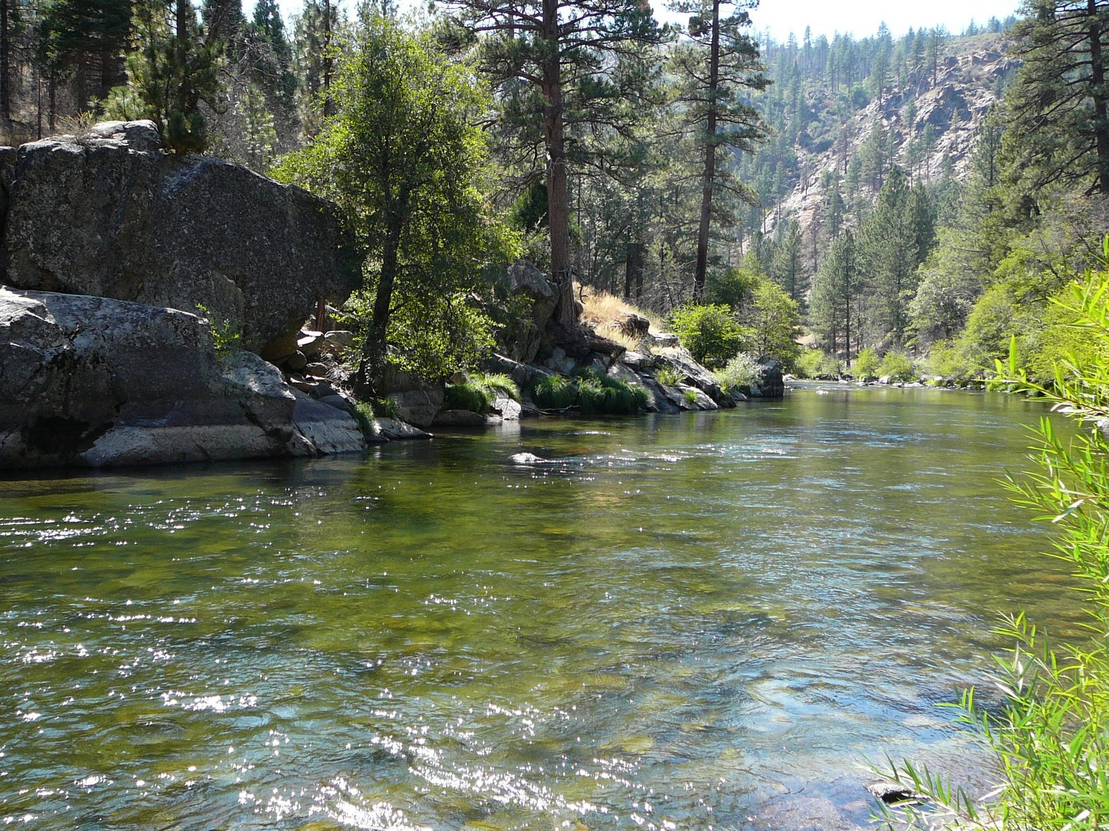 Kern river southwestdesertlover for Campsites with fishing