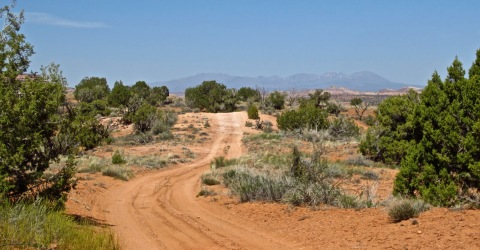 Backroad to the Abajo Mountains