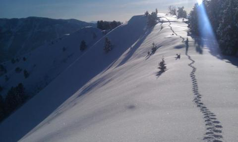 Beirdneau Summit on snowshoes