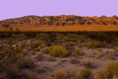 Desert National Wildlife Range or Desert