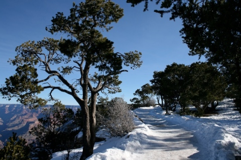 Grand Canyon path snow