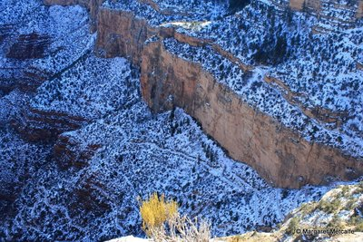Icy Bright Angel Trail