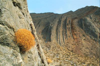 Las Vegas Range in Desert National Wildlife Refuge
