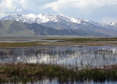 Ruby Lake National Wildlife Refuge