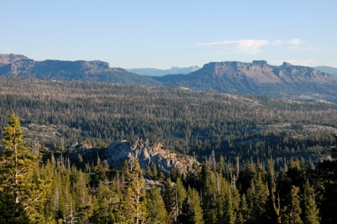 Stanislaus National Forest - Highway 4 Corridor