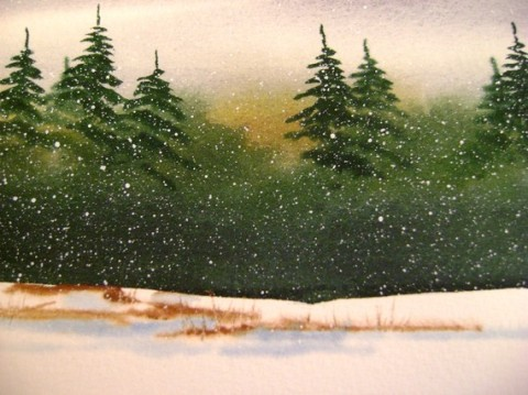 Winter Pine Tree Forest for him