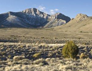 Bald Mountain Wilderness
