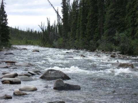 Crescent Creek, Yukon-Charley Rivers National Preserve