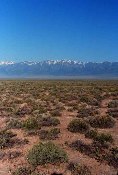 North Shoshone Peak