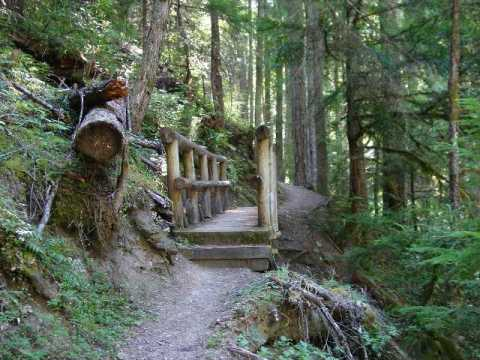 Foot bridge along Yakso Falls Trail in Rogue River-Umpqua National Forest