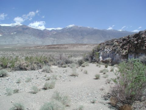 Owens Valley near Bishop