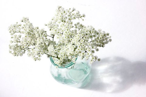Baby's Breath in Turquoise Vase Photograph, White Wall Decor, Flower Photographs, White Flowers Still Life