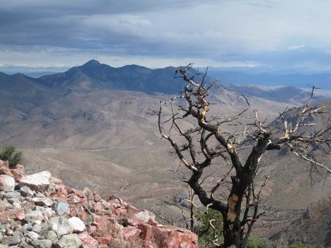 White Mountain Peak CA