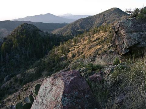 Mazatzal Wilderness