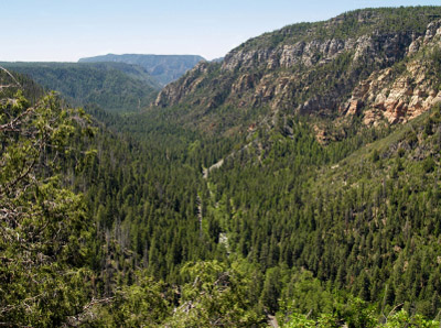 Looking into Arizona's Oak Creek Canyon from the Mogollon Rim
