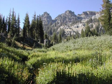 Warren Lake trail