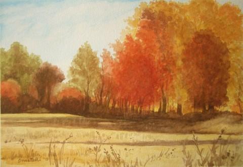 Spontaneous Landscape 3