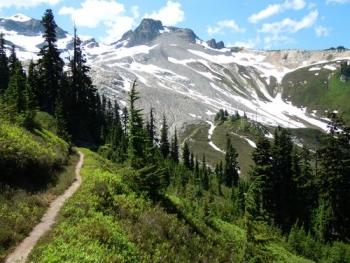 Pacific Crest Trail Ebbetts Pass