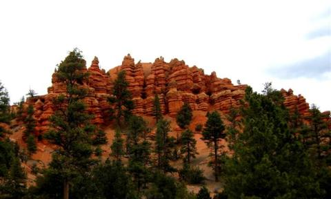 Red Canyon in Dixie NP