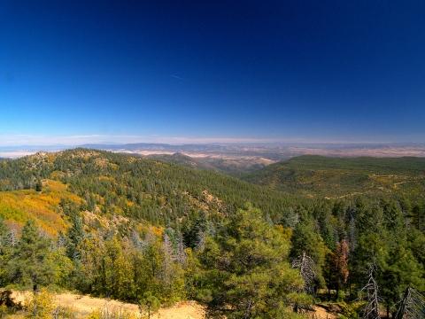 Mount Union AZ
