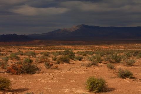 Virgin Peak across desert floor