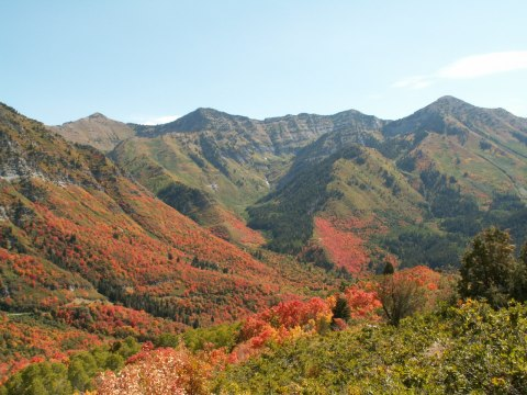 Wasatch Range Autumn