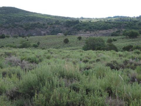 Pastora Peak AZ