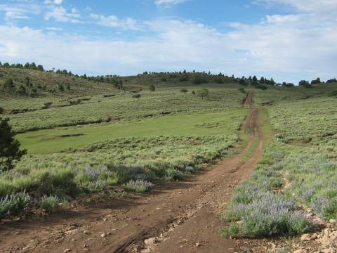 Pastora Peak