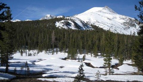 Mammouth Peak