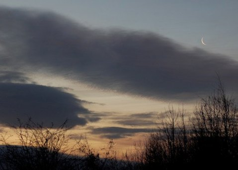 Moon and Sun at Solstice, 8 x 10 photograph, sunrise photo, winter solstice 2011, sky, trees, dawn