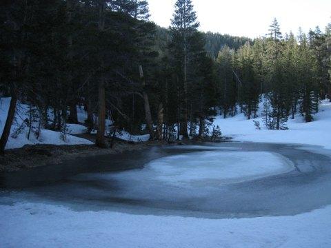Mt. Dana creek