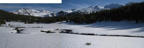 Same creek Mt. Dana