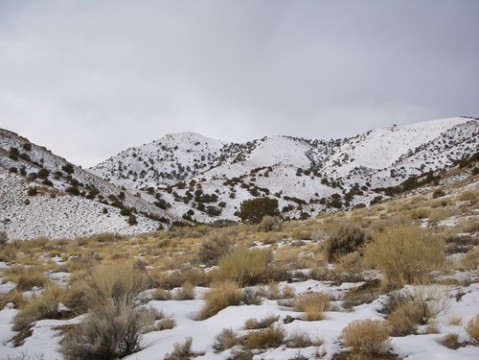 Grassy Mountain Utah