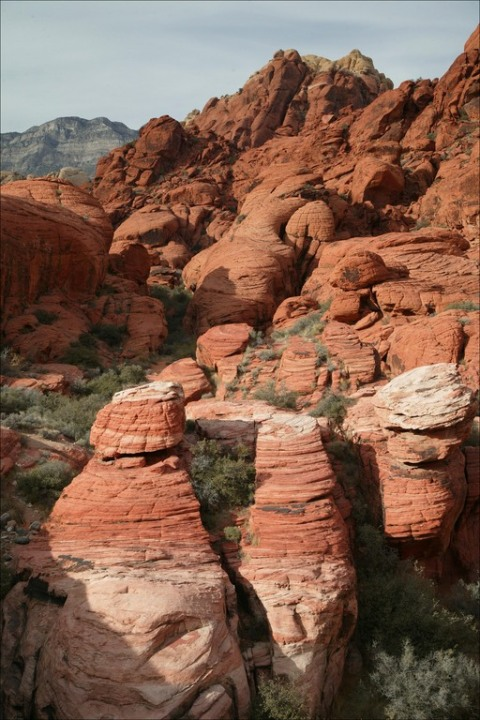 Sandstone outcroppings in the Red Rock Canyon National Conservation Area
