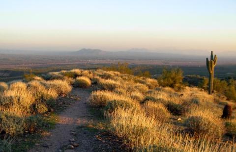 Lousley Hill Trail
