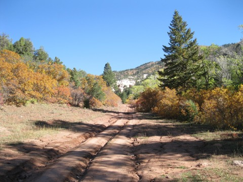 Nizhoni Campground area in the Manti-La Sal National Forest