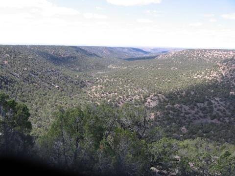 Ruin Canyon