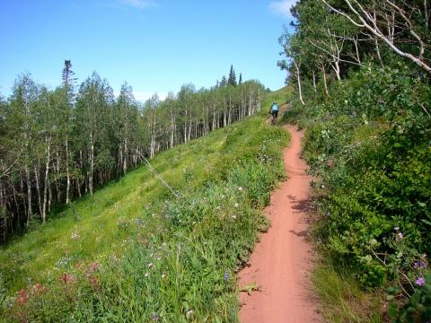 Wasatch Crest trail