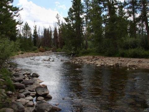 Wasatch National Forest Stillwater Campground