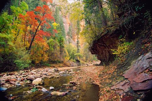 Oak Creek Canyon Southwestdesertlover