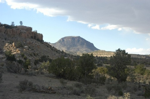 40 acres  Alamocita Creek NM