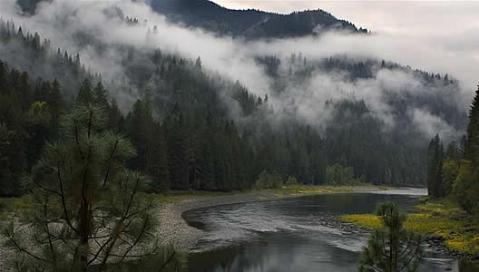 Nez Perce-Clearwater National Forest