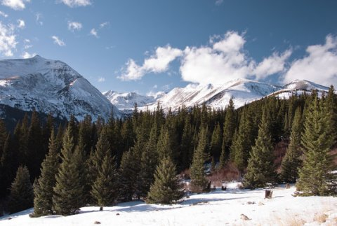 Rocky Mountains Snow Hoosier Pass Pine Trees Winter Colorado Forest Rustic Cabin Lodge Photograph