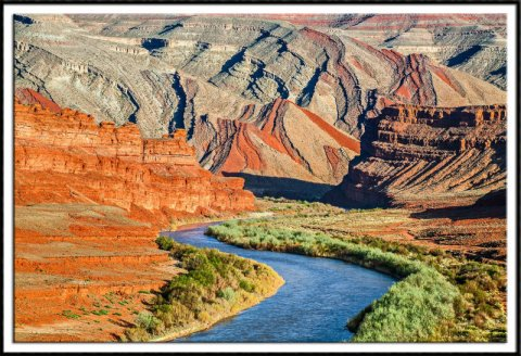 San Juan River and Raplee Anticline