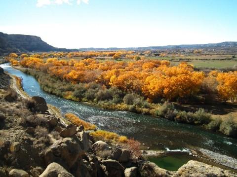 San Juan River flowing south below the village of Navajo Dam