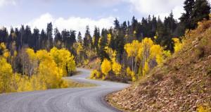 Mount Nebo Loop Scenic Drive
