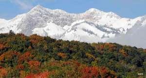 Mount Ogden in Uinta-Wasatch-Cache National Forest