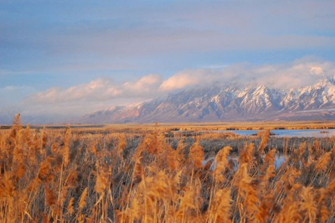 Wasatch Mountains from Ogden Bay