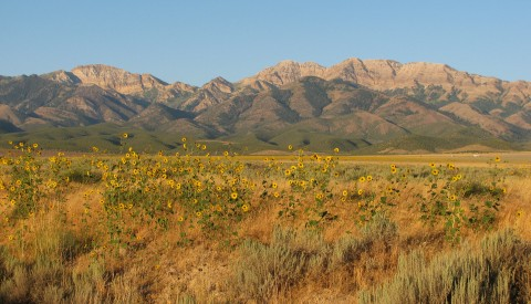 Stansbury Mountains